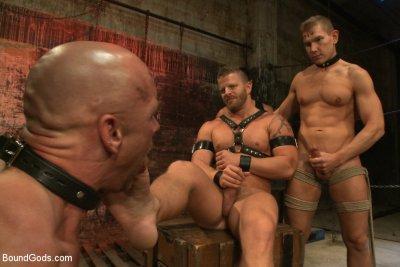 Gay bound gods